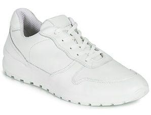 Xαμηλά Sneakers Casual Attitude NOUCHE ΣΤΕΛΕΧΟΣ: Δέρμα & ΕΠΕΝΔΥΣΗ: Ύφασμα & ΕΣ. ΣΟΛΑ: Δέρμα & ΕΞ. ΣΟΛΑ: Συνθετικό