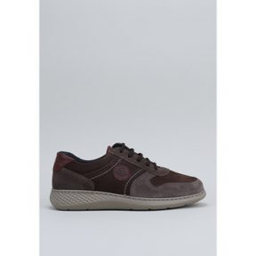 Xαμηλά Sneakers Notton – [COMPOSITION_COMPLETE]