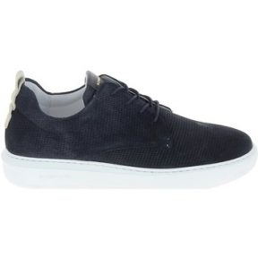 Xαμηλά Sneakers Schmoove Bump Suede Print Bleu [COMPOSITION_COMPLETE]