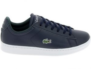 Xαμηλά Sneakers Lacoste Carnaby Jr Marine Blanc