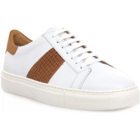 Xαμηλά Sneakers Soldini COLORADO BIANCO CUOIO